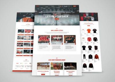 Basketball Lesum Vegesack