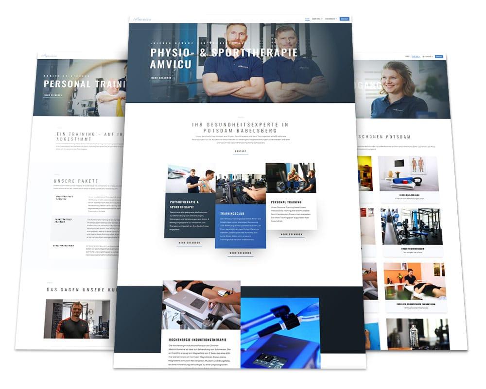 Webdesign Portfolio von 717media: Amvicu